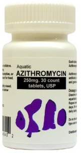 Fish meds really freedom hold ranch for Azithromycin for fish